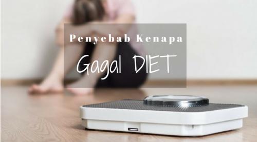 Anda Selalu Gagal Diet? Ini Penyebabnya