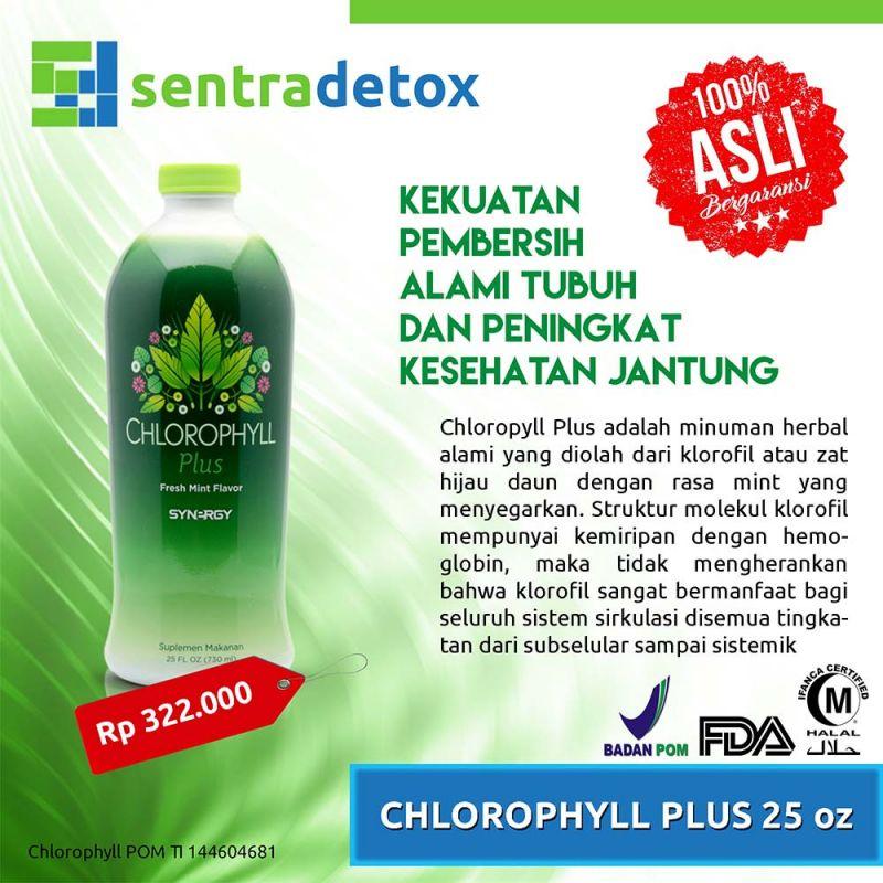 Chlorophyll Plus 25 Oz